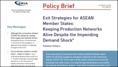 [Policy Brief] Exit Strategies for ASEAN Member States: Keeping Production Networks Alive Despite the Impending Demand Shock