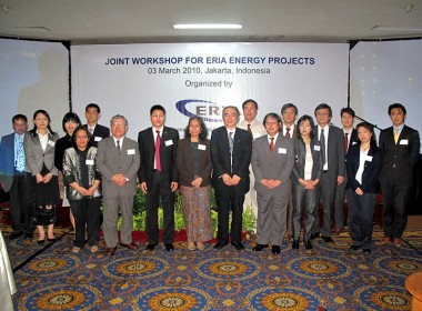 Joint Workshop for ERIA Energy Projects
