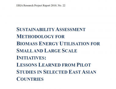 ERIA Research Project 2010 No.22