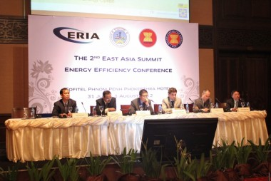 East Asian Energy Strategies Modified for Survival Fittest