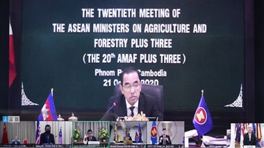 ERIA Presents to ASEAN Plus Three Agriculture and Forestry Ministers
