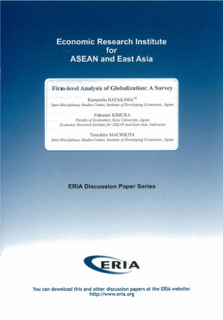 Firm-level Analysis of Globalization: A Survey