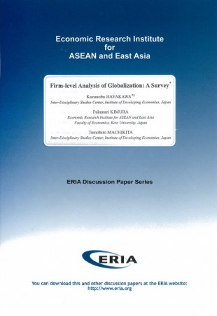 Firm-level Analysis of Globalization: A Survey (2009)