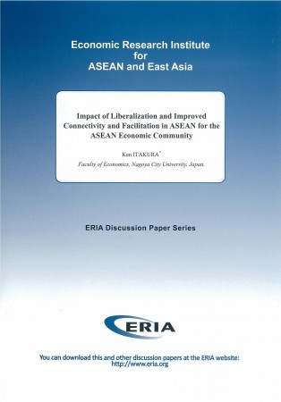 Energy Market Integration in East Asia: Theories, Electricity Sector and Subsidies