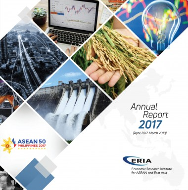 ERIA Annual Report 2017
