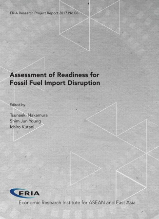 Assessment of Readiness for Fossil Fuel Import Disruption